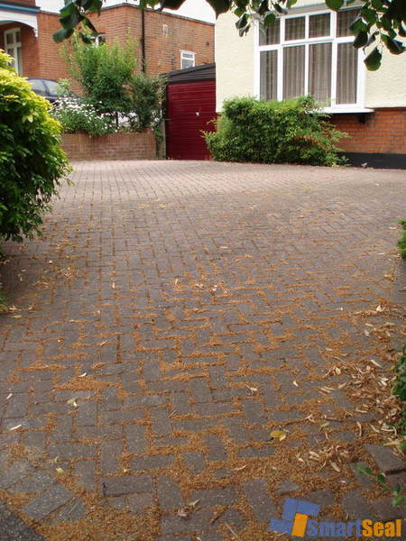 Block paved driveway prior to cleaning