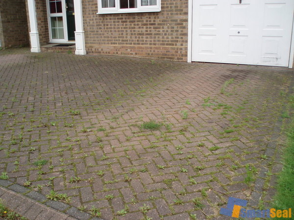 Weed infested block paving